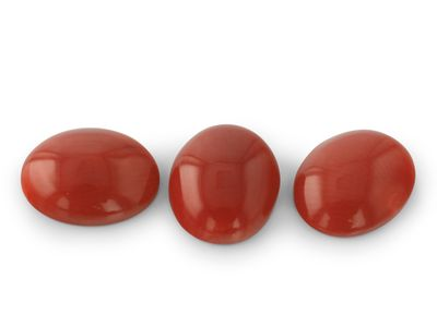 Coral Red 10x8mm Oval (N)