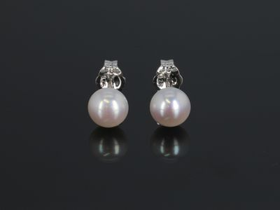 Freshwater Pearl White 6-6.5mm Round Button Earrings (C)