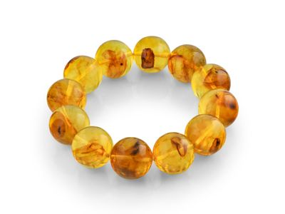 Amber 18mm Round Polish Bracelet with Insects (E)