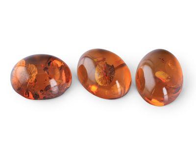 Amber 9x7mm Cabochon Oval (E)