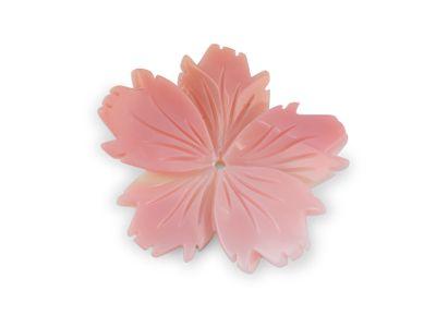 Queen Conch 31mm Flower