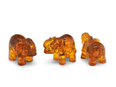 Amber 30x20mm Elephant Carvings (T)
