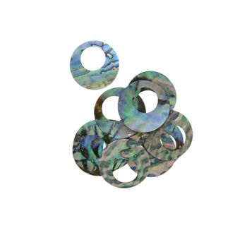 DISC PAUA OFFSET HOLE