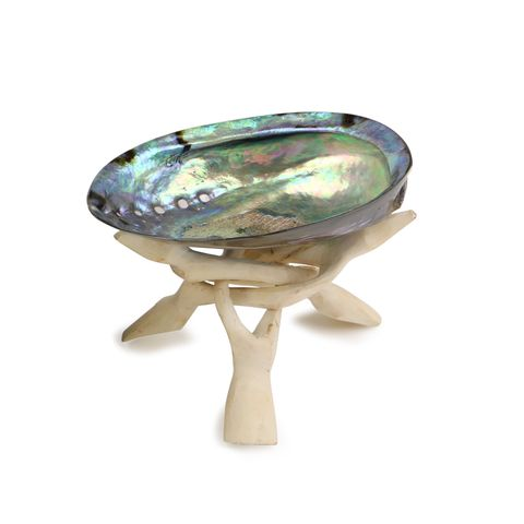 SOUL SHELL - PREMIUM POLISHED SHELL WITH WHITE STAND