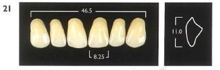 21-A4 UPPER ANTERIOR MONARCH TEETH