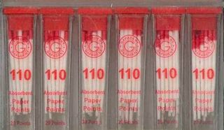 PAPER POINTS CC 110 VIAL/34