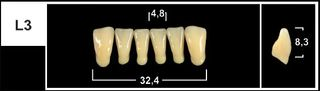 L3 A1 LOWER ANTERIOR TRIBOS TEETH