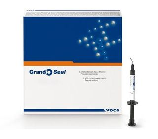 GRANDIO SEAL SYRINGE 2 X 2G