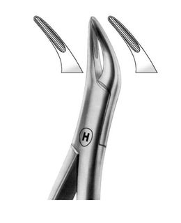 EXTRACTION FORCEP AMERICAN 69 SMALL ROOT