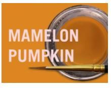 MIYO MAMELON PUMPKIN FLUOR PASTE 4G