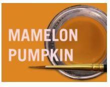 MIYO MAMELON PUMPKIN FLUOR PASTE 4G