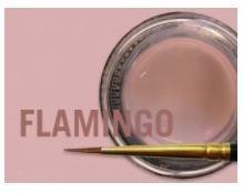 MIYO GINGIVAL FLAMINGO PASTE 4G