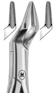 EXTRACTION FORCEPS AMERICAN 32A