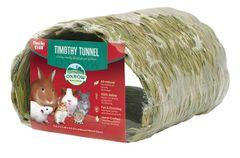 Timothy Club Tunnel