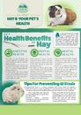Hay and your Pet's Health
