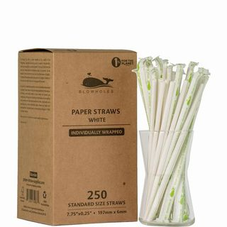 BLOWHOLES PAPER STRAWS WRAPPED STANDARD WHITE 250CT CS24