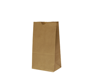 "BROWN PAPER BAG ""4"" 248x127x80 (2000)"