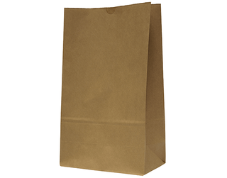 "BROWN PAPER BAG ""20"" 430x305x175 (250)"