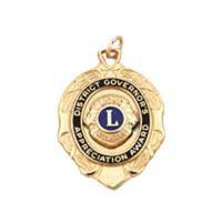 DG Appreciation Award Medal
