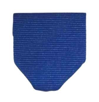 Ribbon Presentation - Blue