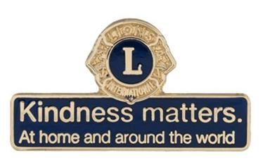 Kindness Matters Pin- Blue