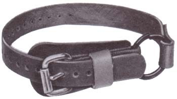 "Buckingham Foot Straps/Split Ring 1"" x 26"" (pair)"