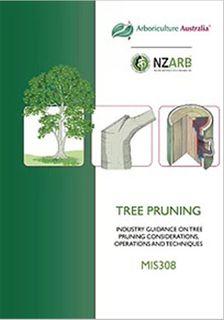 MIS308 Tree Pruning - Member Price
