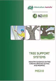 MIS310 Tree Support Systems - Member Price