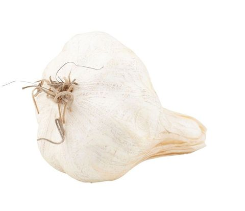 Artificial Fruitl Garlic 10cm