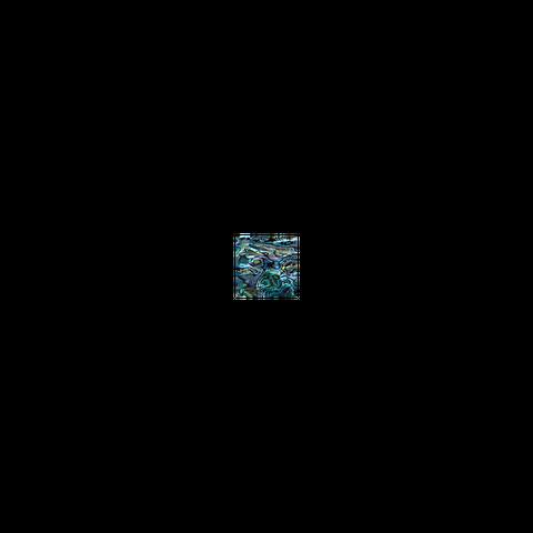 SHELL VENEER TILE - PAUA ALL NATURAL - 50*50