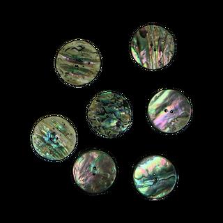 SHELL BUTTON - PAUA - 32MM [50L] (DOZ)