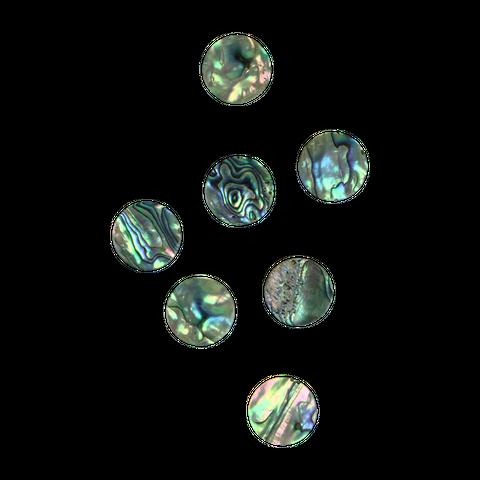 NZ Abalone Paua Shell - Circle - Natural Curve, Polished, Clean back