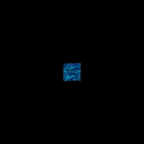 SHELL VENEER TILE - PAUA BLUE SAPPHIRE - 50*50