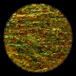 SHELL VENEER COATED - PAUA PERIDOT GREEN - 200*200MM
