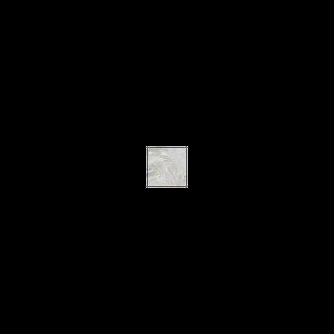 SHELL VENEER TILE - F/W MOP NATURAL - 50*50