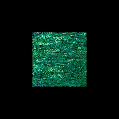 Shell Veneer Tile - NZ Abalone Paua Shell Emerald Green