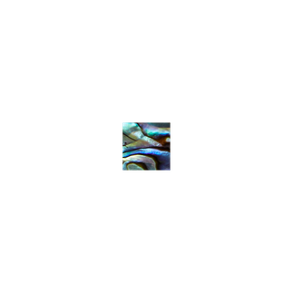 SHELL VENEER SHAPE - PAUA - SQUARE - 10MM (30PCS)