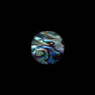 SHELL VENEER SHAPE - PAUA - CIRCLE - 20MM (15PCS) (P&S)
