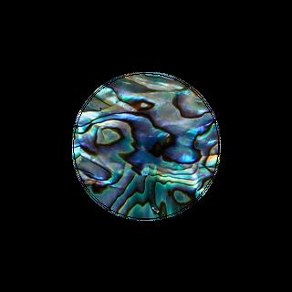 SHELL VENEER SHAPE - PAUA - CIRCLE - 30MM (15PCS) (P&S)