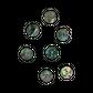 SHELL BUTTON - PAUA - 20MM [32L] (DOZ)