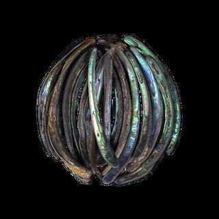 SHELL PIECES PAUA SATIN - RIMS LARGE 80MM+ - 1KG