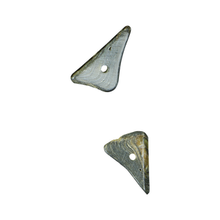SHELL BEAD - PAUA TRIANGLE RIM - 8MM (48PCS)