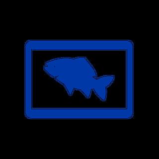 Fishfinder/Sonar Modules