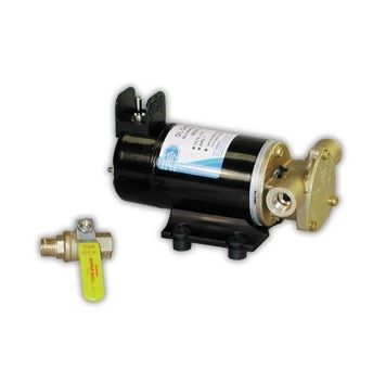 Jabsco Reversing Oil Change Pump