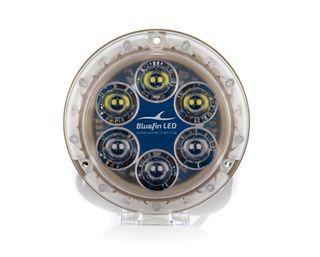 Bluefin Underwater Light Piranha P12