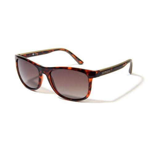 Fender Amber Tort Sunglasses - GE059