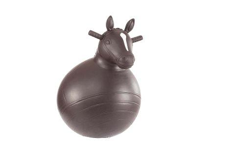 Bouncy Horse - 445