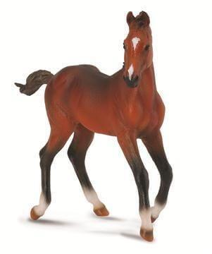 Quarter Horse Foal - CO88586