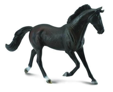 Thoroughbred Mare - CO88478