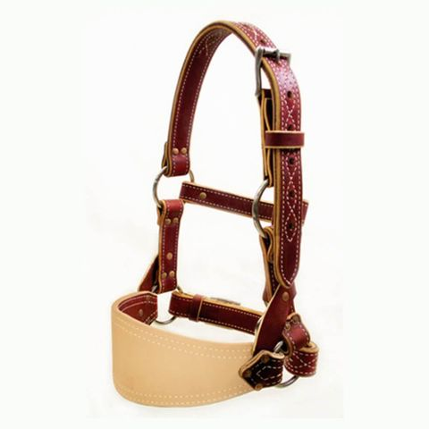 Leather Bronc Halter - 500-4004
